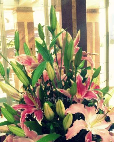 Lillies 5